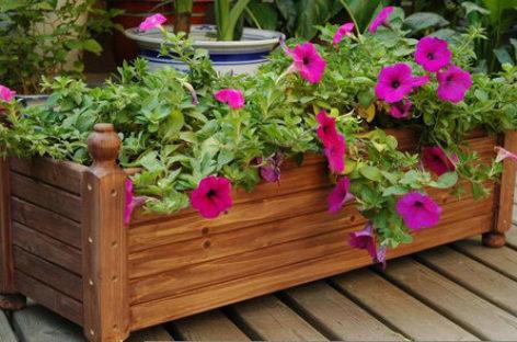 Ý tưởng độc đáo làm vườn từ những tấm gỗ