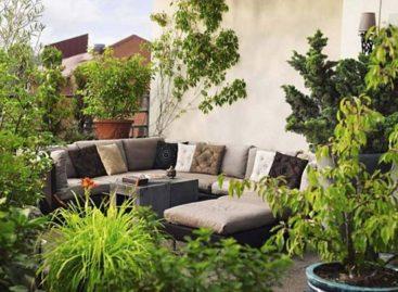 Thiết kế khu vườn theo kiểu Tây Ban Nha