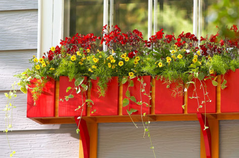 Sắc hoa rực rỡ cho những ô cửa sổ