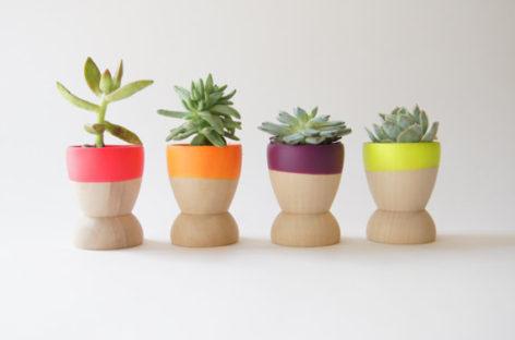 5 ý tưởng xanh cho khu vườn trong nhà