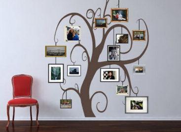 Tường nhà ấn tượng với cây ảnh gia đình