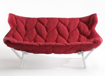 Rực rỡ với bộ sofa hình tán lá