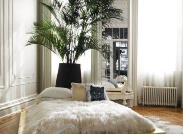 Chiêm ngưỡng căn hộ Brooklyn Brownstone của Kelly Behun