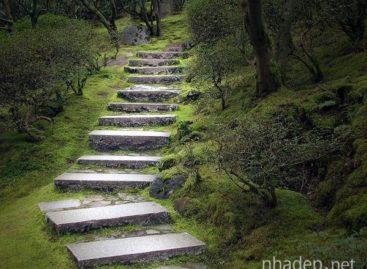 Những bậc thang nhỏ cho khu vườn thơ mộng
