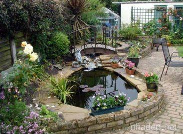 Thiết kế hồ cá trong sân vườn