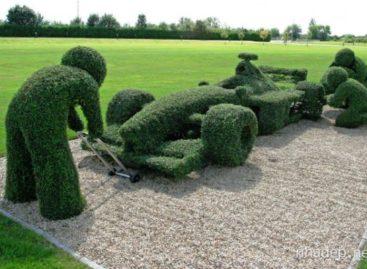 15 ý tưởng nghệ thuật cho sân vườn sang trọng