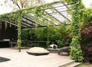Mách bạn những ý tưởng thiết kế sân vườn đẹp mắt