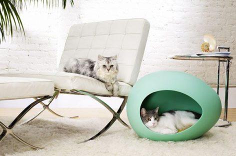 Những ngôi nhà xinh xắn cho thú cưng