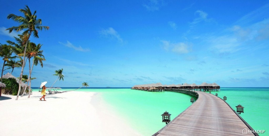 Resort Halaveli Maldives sang trong_05