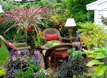 Thiết kế cảnh quan cho sân vườn nhỏ