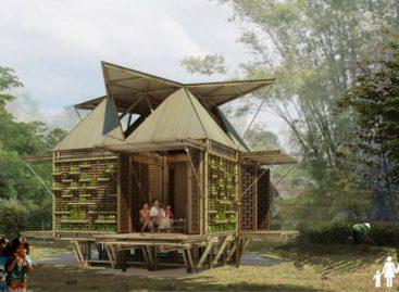 Dự án xây nhà Blooming Bamboo ở Việt Nam