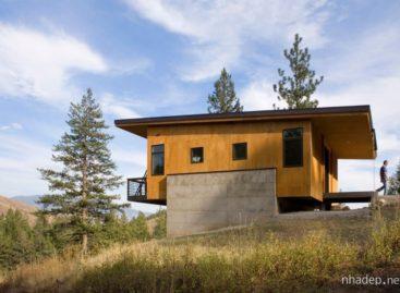 Chiêm ngưỡng vẻ đẹp của ngôi nhà bằng thông rừng