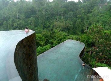 Chiêm ngưỡng những thiết kế bể bơi tuyệt đẹp