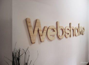 Văn phòng Webshake do Monica Corduneanu thiết kế