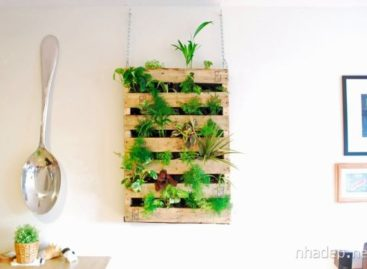 50 ý tưởng trang trí tường nhà trở nên xinh đẹp (Phần cuối)