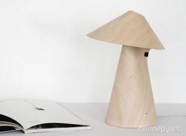 Ấn tượng với mẫu thiết kế đèn Kino