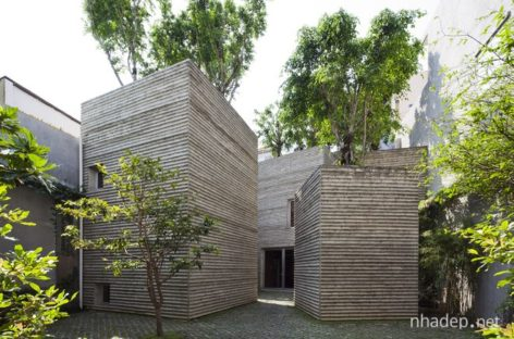 Khu nhà độc đáo phủ kín cây xanh giữa lòng Sài Gòn