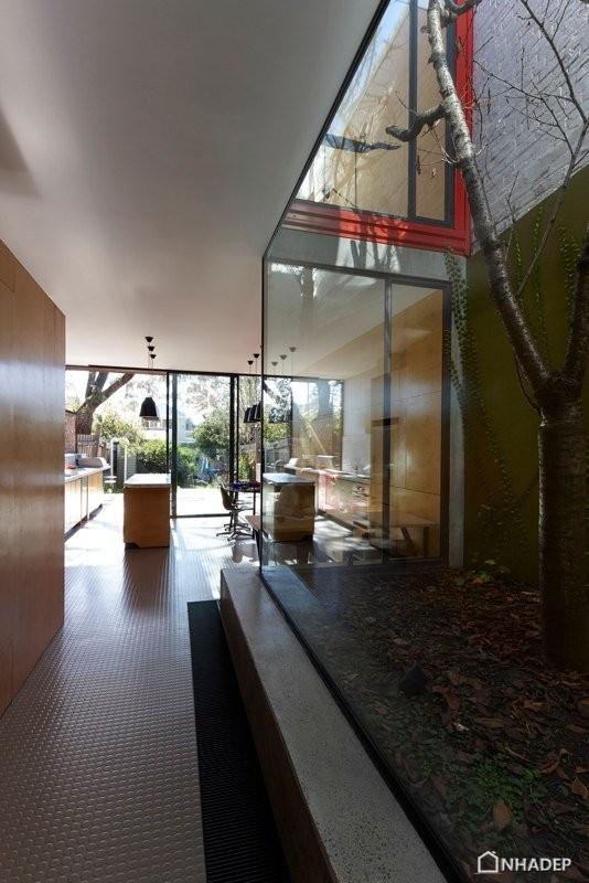 Moor-House-cua-Andrew-Maynard-Architects_12