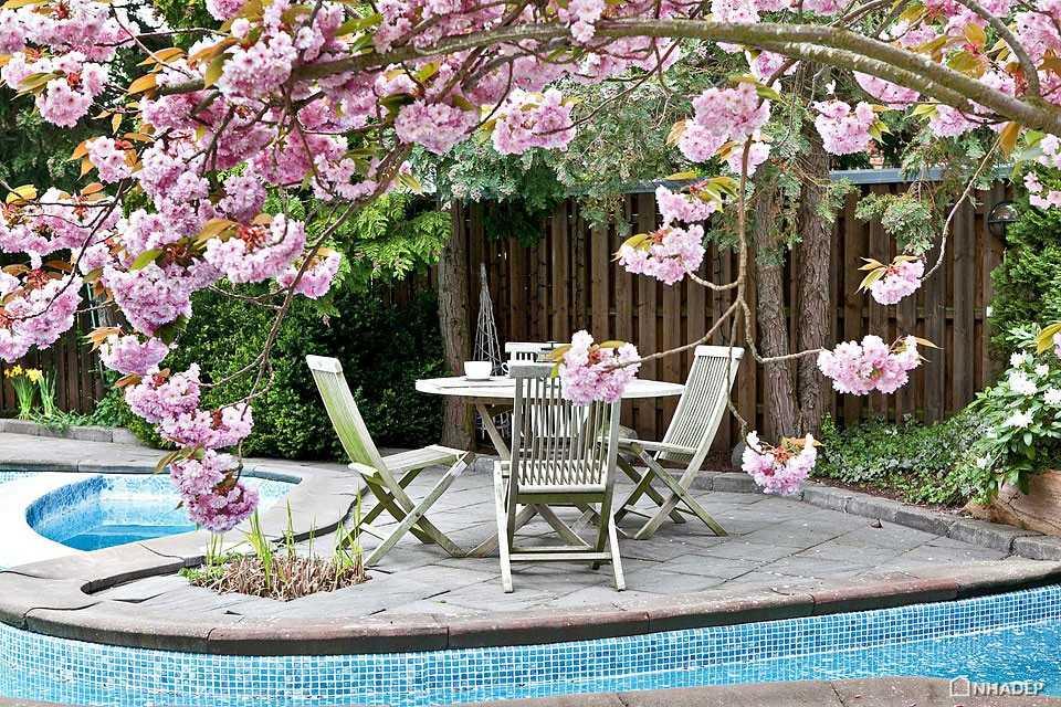 Pool-Paradise_07