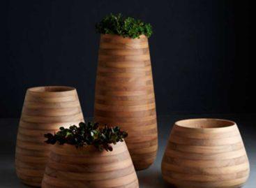 Chiêm ngưỡng thiết kế độc đáo của chậu cây Tuber làm từ gỗ Iroko