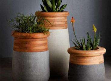 Nét độc đáo của chậu cây Soma thiết kế bởi Laurie Wiid van Heerden