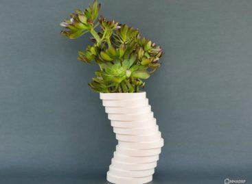 Vẻ đẹp của chậu hoa Vera, thiết kế bởi studio Praktit