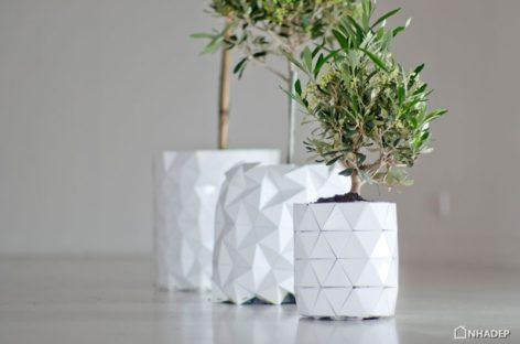 GROWTH – chậu cây origami lớn dần theo cây