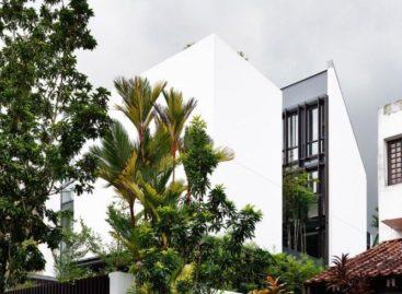 Ngôi nhà Vertical Court với thiết kế giếng trời độc đáo
