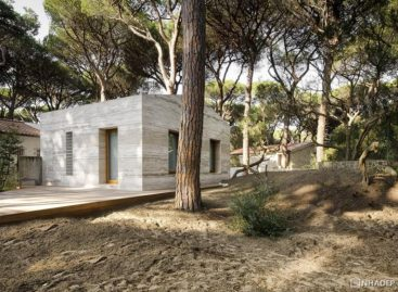 Ngôi nhà nằm trong rừng thông đồng điệu với thiên nhiên