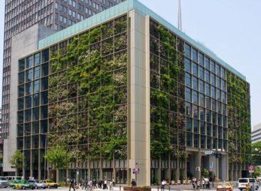 Mãn nhãn với những khu vườn trong toà nhà văn phòng ở Tokyo