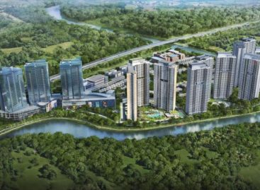 Palm City: Bình yên ven sông, sáng bừng sức sống