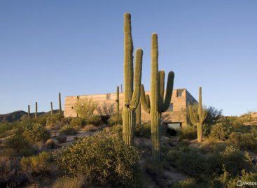 Lạ mắt với ngôi nhà có kiến trúc độc đáo giữa sa mạc Sonoran
