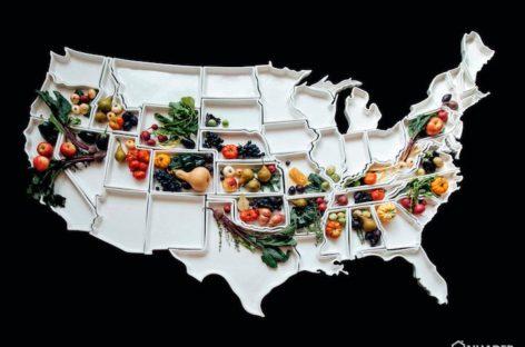 Bộ sưu tập đĩa gốm hình 50 tiểu bang của Hoa Kỳ