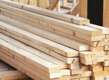 Gỗ phách từ gỗ cứng Hoa Kỳ (Phần 3)