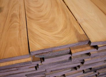 Quy định phân hạng dành cho gỗ cứng Bắc Mỹ (Phần 1)