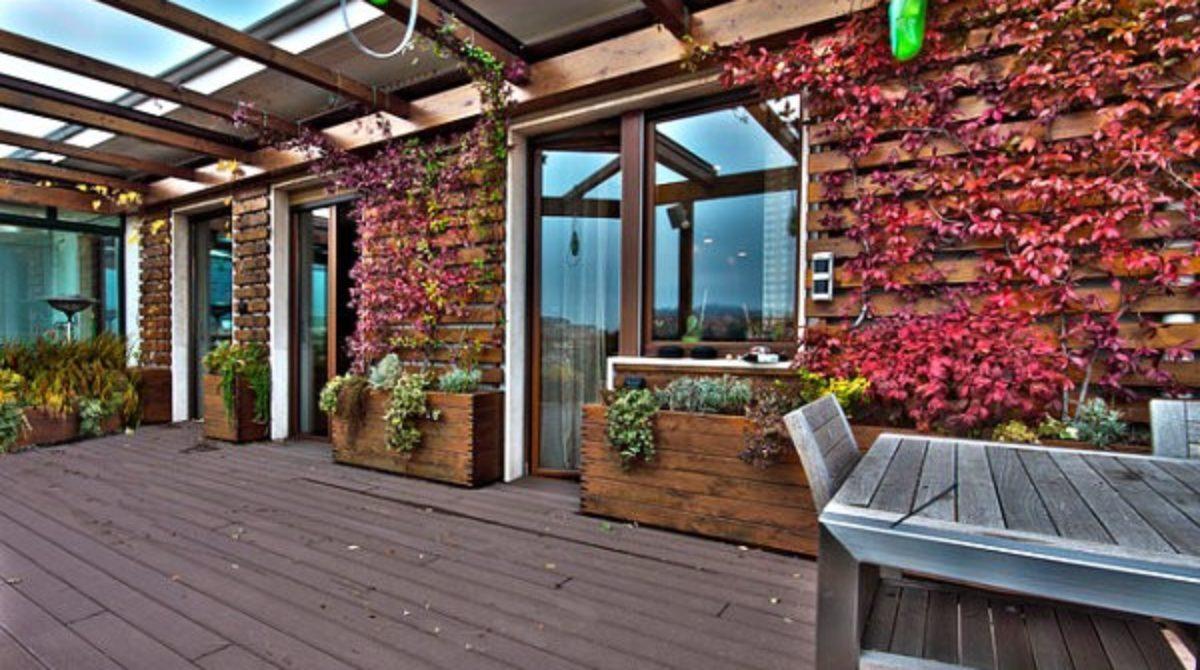 Một vài cách thêm bóng mát và sự thanh bình cho khu vườn