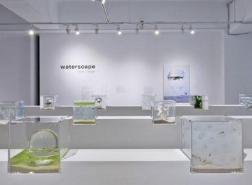 Vẻ đẹp của bể cá kết hợp công nghệ in 3D của Haruka Misawa