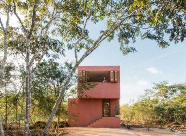 Thiết kế nhà ở trong mơ dành cho tín đồ yêu màu hồng