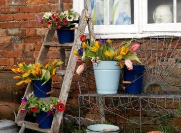 Xu hướng trang trí sân vườn – Phần 1