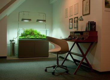 Ý tưởng thiết kế nội thất cho căn hộ nhỏ