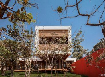 Ngôi nhà gỗ trên mảnh đất cây nhựa thơm Copaiba, Brazil