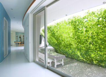 Mảng tường xanh ấn tượng trong ngôi nhà hiện đại Nhật Bản