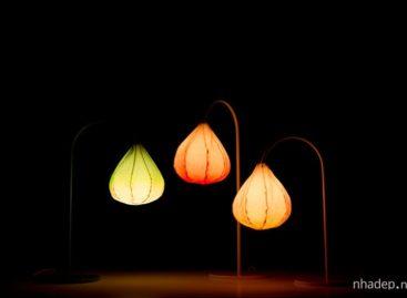 Đèn bàn Bloom – cảm hứng thiên nhiên