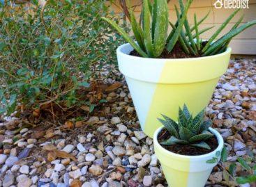 Giải pháp đơn giản tự thiết kế chậu hoa hai màu sắc