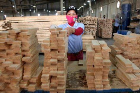 Ngành gỗ đang nhường sân nhà