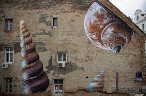 Những vỏ ốc lấp lánh trên bức tường cũ kỹ ở Croatia