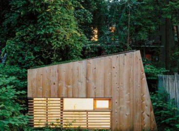 Thiết kế văn phòng tại nhà hiện đại và gần gũi với thiên nhiên
