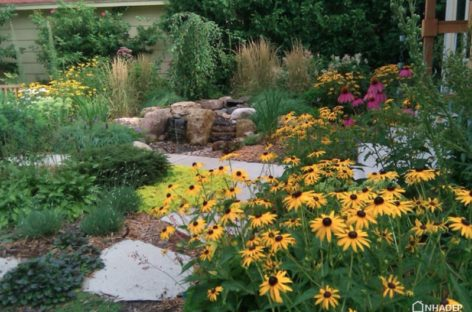 Các ý tưởng không tốn kém để làm đẹp sân vườn (Phần 1)