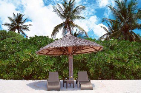 [Sản phẩm nhập khẩu] Ghế hồ bơi Fiji và Fiji cushion của Siesta exclusive