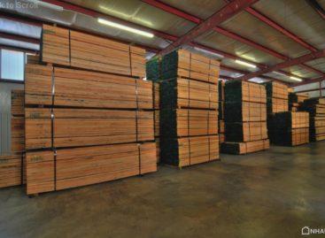 Gỗ phách từ gỗ cứng Hoa Kỳ (Phần 2)